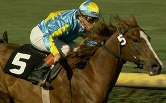 מירוצי סוסים בלונדון - horse racing in London